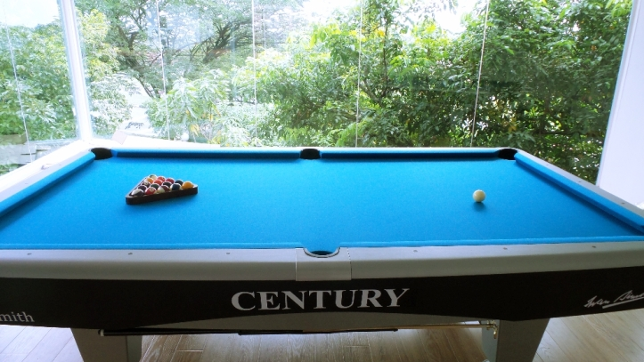 Century Silver 9ft Side View & Logo